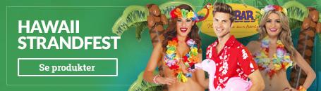 Hawaii kostumer & Hawaii Dekorationer
